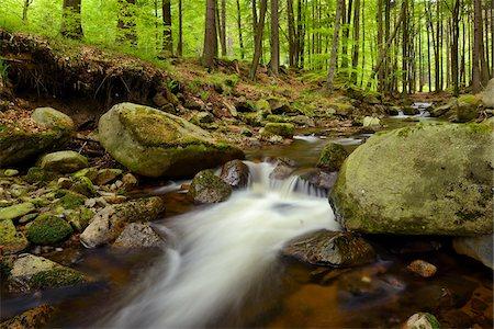 stream - Ilse, Ilse Valley. Heinrich Heine Trail, Ilsenburg, Harz National Park, Harz, Saxony-Anhalt, Germany Stock Photo - Premium Royalty-Free, Code: 600-08082982
