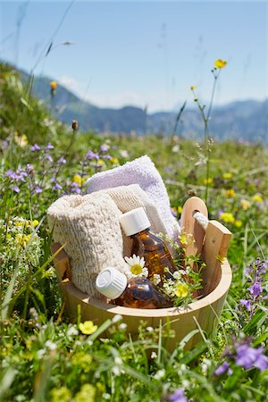 pharmaceutical plant - Bucket with Homeopathic Medicine in Flower Field, Strobl, Salzburger Land, Austria Stock Photo - Premium Royalty-Free, Code: 600-08138862