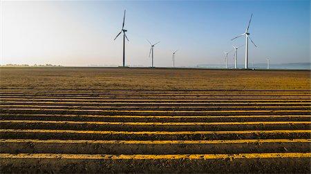 Wind turbines in crop field, Germany Stock Photo - Premium Royalty-Free, Code: 600-08171718