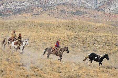 Cowboy and Cowgirls herding horse in wilderness, Rocky Mountains, Wyoming, USA Stock Photo - Premium Royalty-Free, Code: 600-08171760