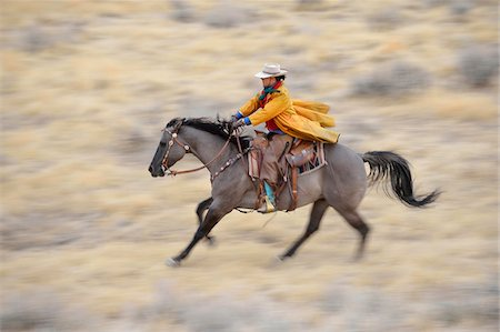 Blurred motion of cowgirl on horse galloping in wilderness, Rocky Mountains, Wyoming, USA Stock Photo - Premium Royalty-Free, Code: 600-08171775