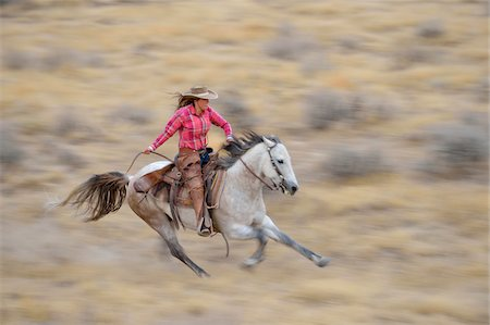 Blurred motion of cowgirl on horse galloping in wilderness, Rocky Mountains, Wyoming, USA Stock Photo - Premium Royalty-Free, Code: 600-08171777