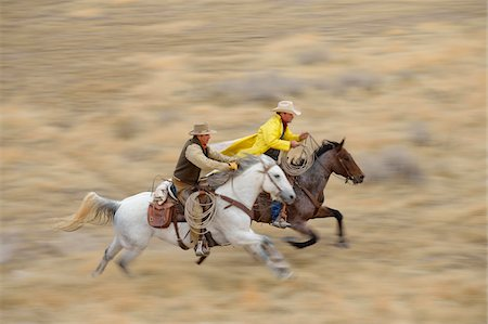 Blurred motion of cowboys on horses galloping in wilderness, Rocky Mountains, Wyoming, USA Stock Photo - Premium Royalty-Free, Code: 600-08171773