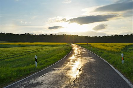 european - Rural Road with Canola Field and Sun in Spring, Reichartshausen, Amorbach, Odenwald, Bavaria, Germany Stock Photo - Premium Royalty-Free, Code: 600-08232290