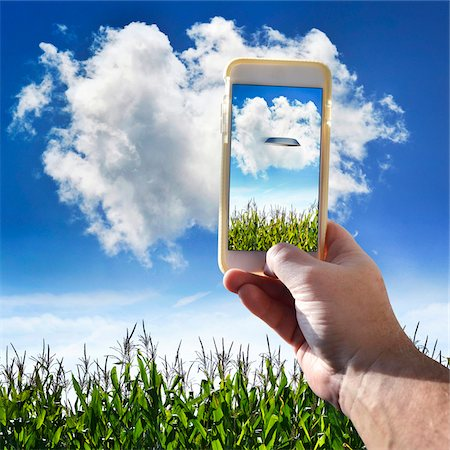 farm phone - Hand Holding Cell Phone in Cornfield Stock Photo - Premium Royalty-Free, Code: 600-08321992
