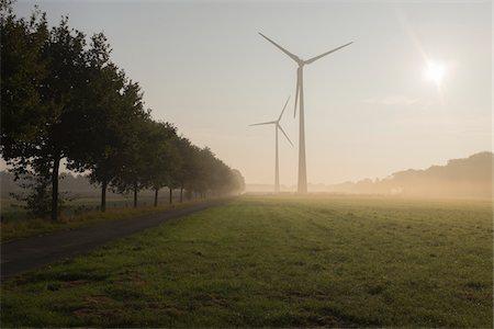 Wind Turbines in Morning Mist, Halle Westfalen, Gutersloh, North Rhine-Westphalia, Germany Stock Photo - Premium Royalty-Free, Code: 600-08416834
