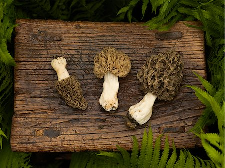 seasonal - Wild Mushrooms on Wooden Stool with Ferns Stock Photo - Premium Royalty-Free, Code: 600-08512589