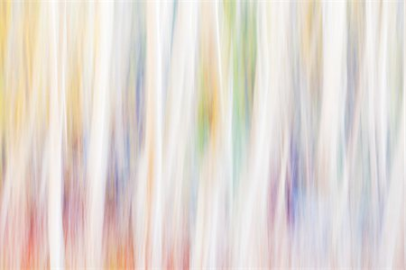 Brightly lit and blurred abstract tree pattern, France Stock Photo - Premium Royalty-Free, Code: 600-08765590