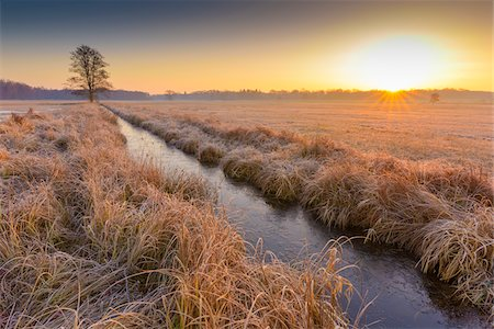 Landscape with stream and lone tree at Sunrise in February in Hesse, Germany Stock Photo - Premium Royalty-Free, Code: 600-08926750