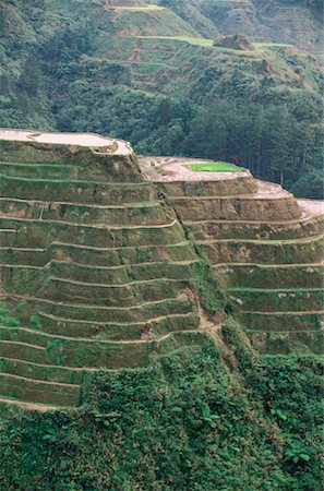 philippine terrace farming - Rice Terraces at Banaue, Province of La Union, Philippines Stock Photo - Premium Royalty-Free, Code: 600-00174293