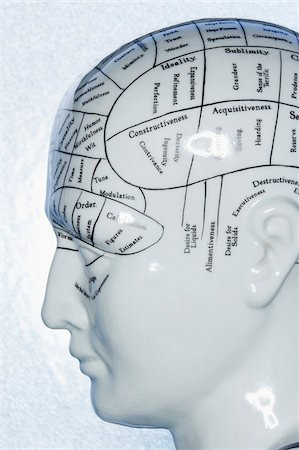 perception - Close-Up of Phrenology Diagram Stock Photo - Premium Royalty-Free, Code: 600-00551137