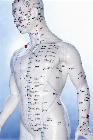 Accupuncture Mannequin with Needle in Heart Stock Photo - Premium Royalty-Free, Code: 600-00551165