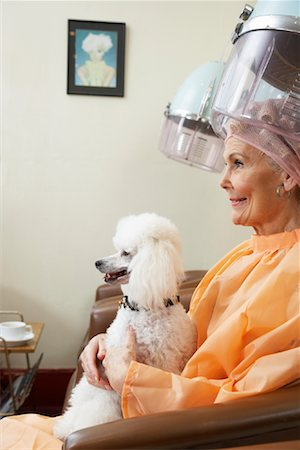 Woman at Hair Salon with Poodle Stock Photo - Premium Royalty-Free, Code: 600-01037743