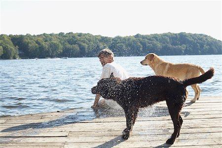 Man on Dock with Dogs, Three Mile Lake, Muskoka, Ontario, Canada Stock Photo - Premium Royalty-Free, Code: 600-01111419
