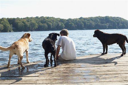 Man on Dock with Dogs, Three Mile Lake, Muskoka, Ontario, Canada Stock Photo - Premium Royalty-Free, Code: 600-01111420