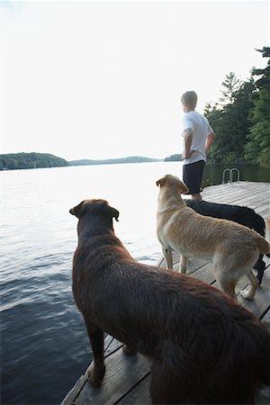 Man on Dock with Dogs, Three Mile Lake, Muskoka, Ontario, Canada Stock Photo - Premium Royalty-Free, Code: 600-01111439