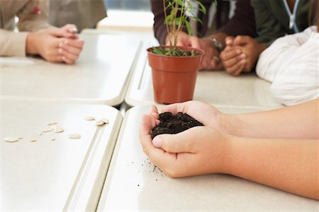 simsearch:600-01184690,k - Students with Plant in Classroom Stock Photo - Premium Royalty-Free, Code: 600-01184733