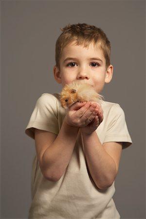 Little Boy Holding Hamster Stock Photo - Premium Royalty-Free, Code: 600-01275393