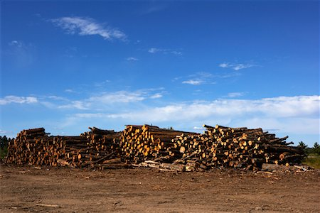 Logs, Ontario, Canada Stock Photo - Premium Royalty-Free, Code: 600-01587034