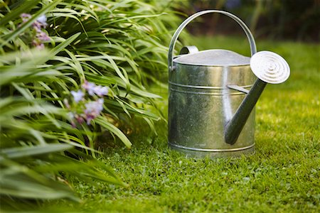 Watering Can Stock Photo - Premium Royalty-Free, Code: 600-01644907