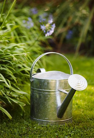 Watering Can Stock Photo - Premium Royalty-Free, Code: 600-01644908