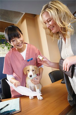 Woman with Dog at Veterinarian's Office Stock Photo - Premium Royalty-Free, Code: 600-02071401