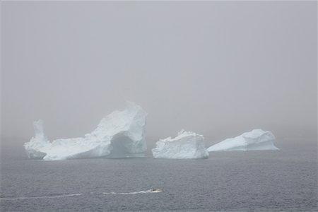 Iceberg in Fog, Near Twillingate, Newfoundland, Canada Stock Photo - Premium Royalty-Free, Code: 600-02264000