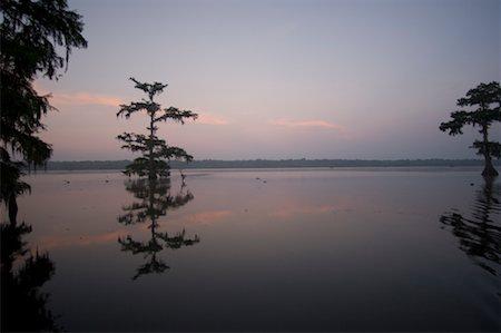 Lake Martin at Dusk, Lafayette, Louisiana, USA Stock Photo - Premium Royalty-Free, Code: 600-02265135