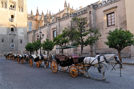 Horses and Buggies on Street, Seville, Spain Stock Photo - Premium Royalty-Free, Code: 600-02290108