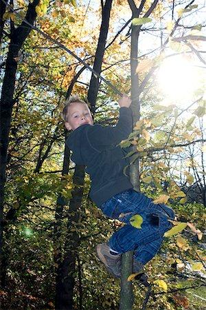 Boy Climbing Tree Stock Photo - Premium Royalty-Free, Code: 600-02345936