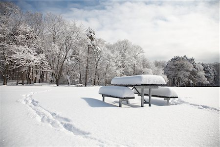 snow covered trees - Snow Covered Trees and Picnic Table in Park, Toronto, Ontario, Canada Stock Photo - Premium Royalty-Free, Code: 600-02347891