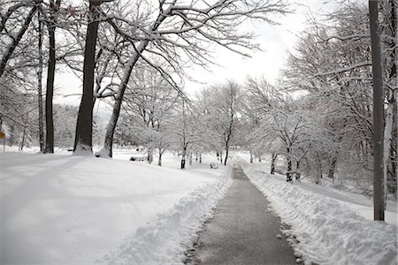 plow - City Park in Winter, Toronto, Ontario, Canada Stock Photo - Premium Royalty-Free, Code: 600-02348546