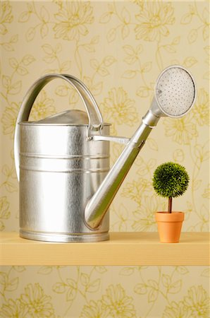 Watering Can and Plant Stock Photo - Premium Royalty-Free, Code: 600-02594026
