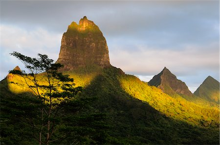 french polynesia - Mountain Peak and Opunohu Valley, Moorea, French Polynesia Stock Photo - Premium Royalty-Free, Code: 600-02590675