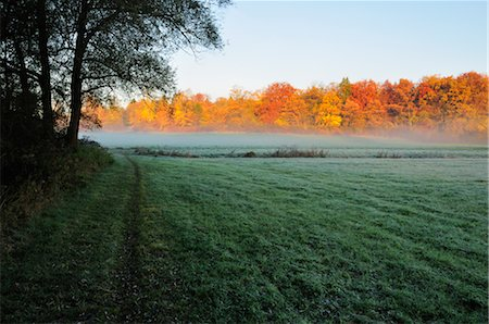 Field and Forest in Autumn, Fuerstenfeldbruck, Bavaria, Germany Stock Photo - Premium Royalty-Free, Code: 600-02633499