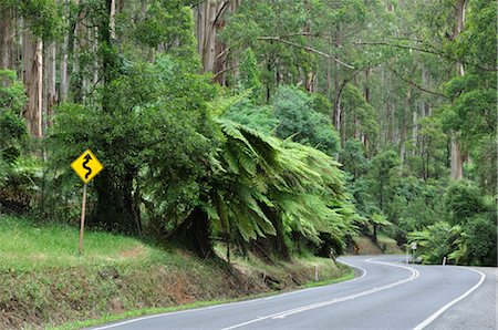 road landscape - Road, Dandenong Ranges National Park, Victoria, Australia Stock Photo - Premium Royalty-Free, Code: 600-02659888
