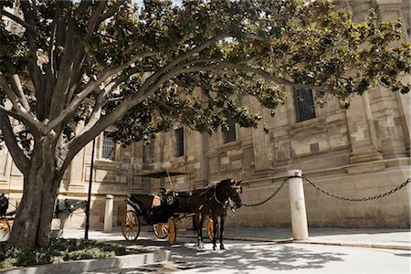 Horse Drawn Carriage, Seville, Spain Stock Photo - Premium Royalty-Free, Code: 600-02669985