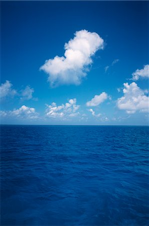 fluffy - Tropical Seascape, Sea & Blue Sky Stock Photo - Premium Royalty-Free, Code: 600-02886000