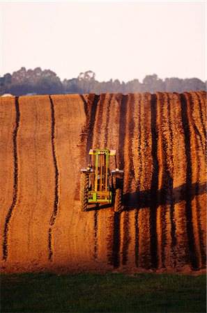 plow - Ploughing Potato Field Stock Photo - Premium Royalty-Free, Code: 600-02886150