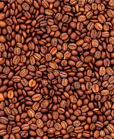 Coffee Beans Stock Photo - Premium Royalty-Free, Code: 600-02886503