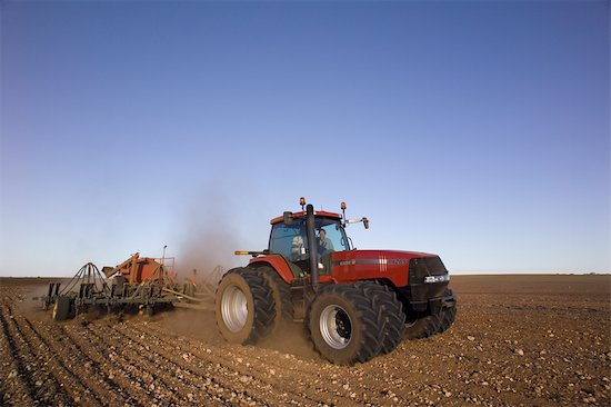Cultivation Of Wheat. Wheat Sowing, Tractor Pulling