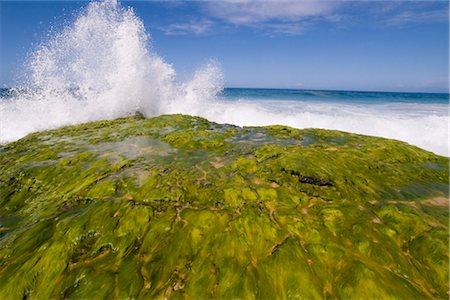 Surf Breaking, Kauai, Hawaii, USA Stock Photo - Premium Royalty-Free, Code: 600-02912139