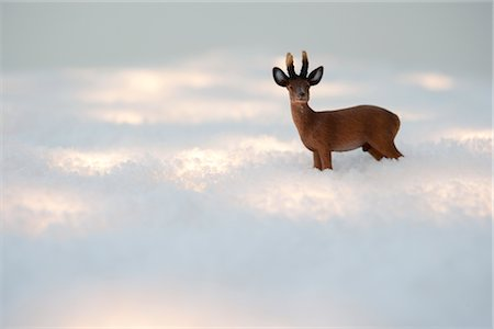 reindeer in snow - Christmas Decoration Stock Photo - Premium Royalty-Free, Code: 600-02972937