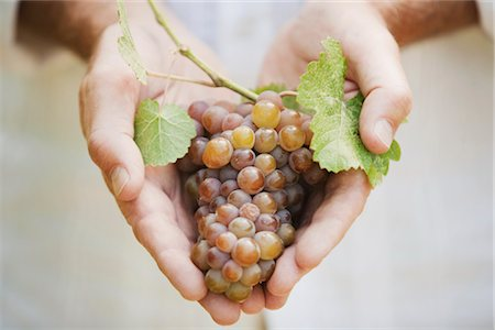 Close-up of Man Holding Grapes Stock Photo - Premium Royalty-Free, Code: 600-03152988