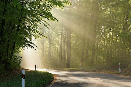 Road Through Forest, Spessart, Bavaria, Germany Stock Photo - Premium Royalty-Free, Code: 600-03404401