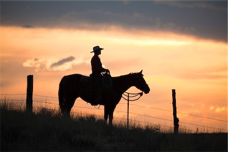 Cowgirl on Horse Stock Photo - Premium Royalty-Free, Code: 600-03407389