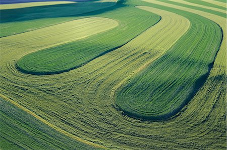 plow - Fields, Palouse Region, Palouse, Whitman County, Washington State, USA Stock Photo - Premium Royalty-Free, Code: 600-03445378
