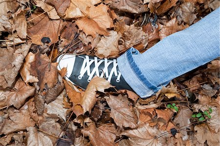 Woman Walking in Autumn Leaves Stock Photo - Premium Royalty-Free, Code: 600-03451498