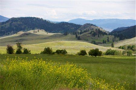 Landscape, British Columbia, Canada Stock Photo - Premium Royalty-Free, Code: 600-03586909