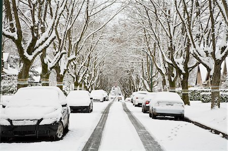 Winter, West Point Grey, Vancouver, British Columbia, Canada Stock Photo - Premium Royalty-Free, Code: 600-03615884